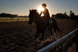 Te traemos el pronóstico y análisis de la carrera hípica Belmont Stakes, a celebrarse este veinte de junio de 2020